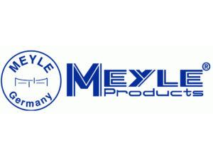 Секрет развития MEYLE