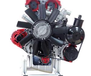 IVDB02 MPI Cutaway model