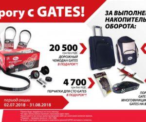 Акция от Elit: в дорогу с Gates