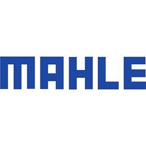 MAHLE відзначає своє 100-річчя, але не святкує