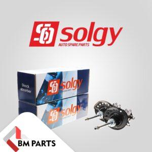 Передні амортизатори для Nissan Leaf від Solgy в асортименті BM Parts